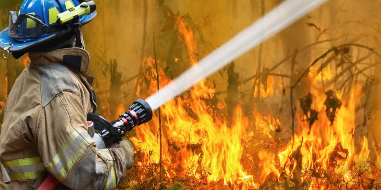 Henry Schein Raising Money for Australia Bushfires Recovery