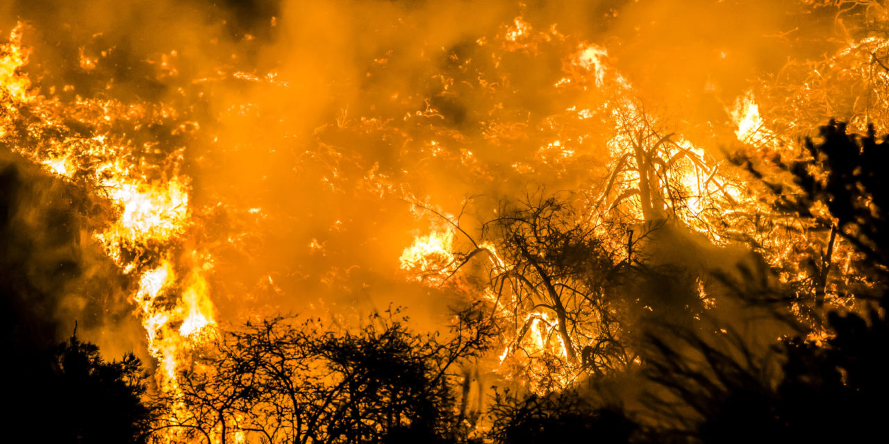 Henry Schein Customer Assistance Hotline Open for Those Affected by the California Wildfires