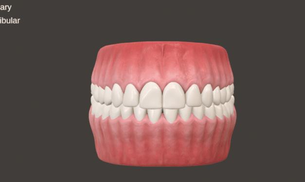 New DLOSCE Uses 3D Models for Licensure Assessment